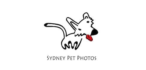 Sydney Pet Photos